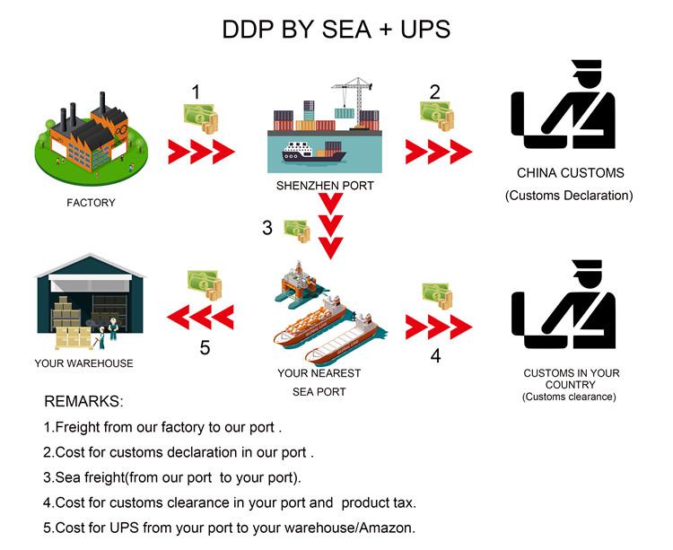 DDP-8