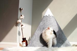 Felt Cat House with Snowberg